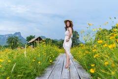 Posição feliz da mulher na ponte de madeira com campo de flor amarelo do cosmos fotos de stock