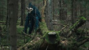 Posição horrívea da criatura entre árvores no monstro terrível da floresta vídeos de arquivo