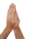Posição Yogic Namaste Anjali da mão Imagens de Stock Royalty Free