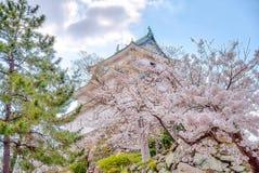Posi??o do castelo de Wakayama sobre o monte com as flores de cerejeira no foregound foto de stock