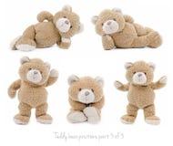 Posiciones de oso de peluche Foto de archivo
