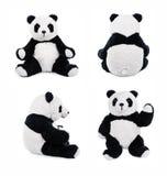 Posiciones de oso de peluche de la panda Imágenes de archivo libres de regalías