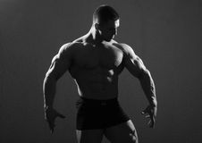 Posing bodybuilder Royalty Free Stock Image