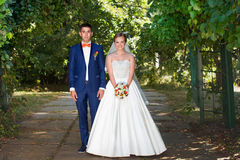 Posing bride and groom. Sunny day. Royalty Free Stock Photography