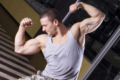 Posing in the gym Royalty Free Stock Photography