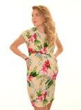 Posing pregnant woman Stock Photos