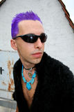Posing profile punk. Posing punk profile with purple hair Royalty Free Stock Images