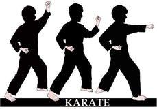 Posities en technieken van karate stock foto's