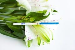 Positieve zwangerschapstest met een boeket van witte alstroemeriabloemen stock foto's