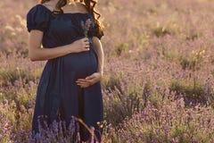 Position aux cheveux longs de femme enceinte un jour ensoleillé dans un domaine de lavande avec un bouquet de lavande images libres de droits