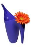 Position d'arrosage et fleur d'orage Images stock