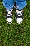 Position dans l'herbe fraîche de ressort Photos stock