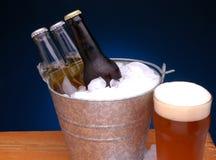 Position de bière image stock