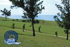 Position de billes de golf Images stock