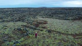 Position de femme dans les domaines de lave verts dans l'antenne du sud de l'Islande banque de vidéos