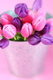 Position de fleurs Photos stock
