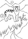 Position et regard de tigre de Litte Photographie stock libre de droits