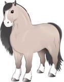 Position grise de cheval photographie stock
