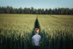 Position mignonne de petit garçon dans le domaine vert dans le jour d'été Vue arrière photographie stock