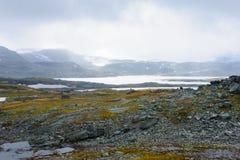 Position norvégienne Photographie stock libre de droits
