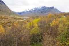 Position norvégienne Photo libre de droits