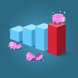 Position porcine forte sur l'étape la plus élevée Image libre de droits