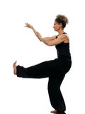 Position tadjiquan chuan de pose de posture de chi de tai de femme Image stock