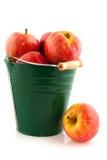 Position verte avec les pommes rouges Photos libres de droits