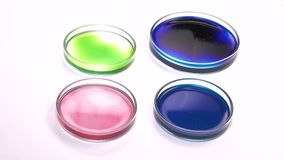 Positioning an colored spots petri dish. Several petri dishes of varying colors content stock video
