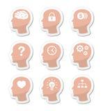 Positionnement d'étiquettes principal de cerveau Images libres de droits