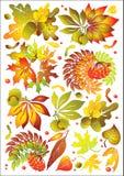 Positionnement d'automne Photographie stock