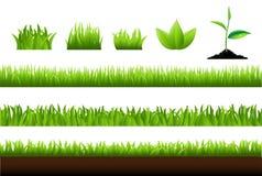 Positionnement d'herbe Photo libre de droits