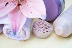 Positionnement de bain de beauté Photographie stock libre de droits