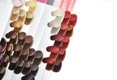 Positionnement de couleurs de cheveu. Photographie stock