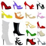 Positionnement de graphisme de chaussures de femme Image stock