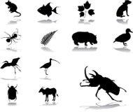 positionnement de nature de 86 graphismes illustration de vecteur