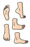 Positionnement de pied illustration stock