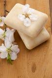 Positionnement de station thermale de savon d'amande images stock