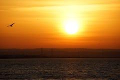 Positionnement de Sun Photographie stock libre de droits