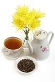 Positionnement de thé de porcelaine Photos libres de droits