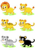 Positionnement de tigre et de lion illustration stock