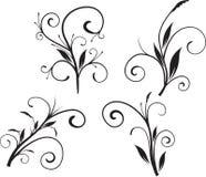 Positionnement floral de vecteur Image libre de droits