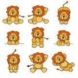Positionnement mignon de lion Images stock