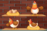 Positions of a hen laying eggs Royalty Free Stock Photos