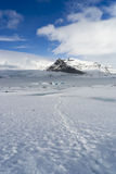 Positions islandaises - glacier image stock