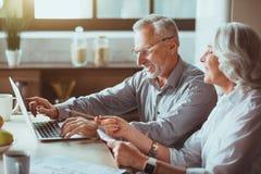 Positive aged couple using laptop royalty free stock photo