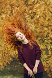 Positive beautiful young woman with red long hair on autumn forest background, hair in different directions royalty free stock photography