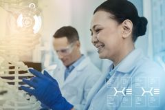 Positive biologist wearing gloves and looking at the DNA model. DNA analysis. Cheerful enthusiastic biologist wearing rubber gloves and smiling while looking at royalty free stock photo