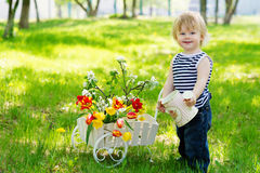 Positive boy with watering can and flowers Stock Images