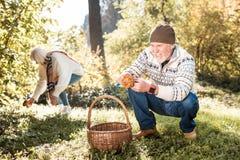 Positive cheerful man sitting near the basket stock photos